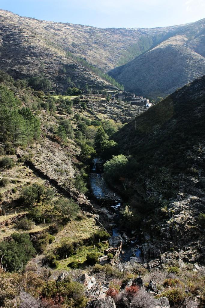 Drave hills